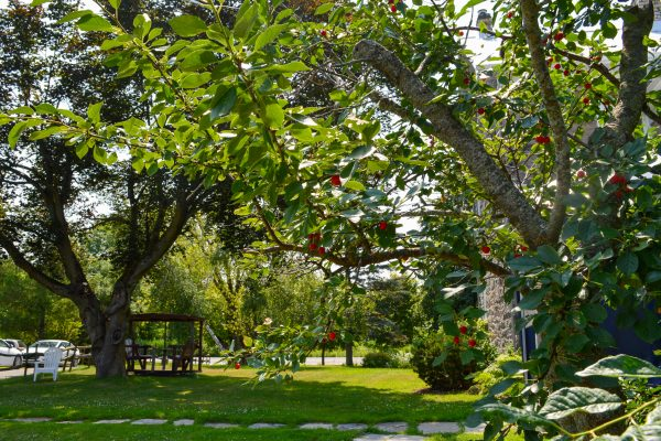 Grounds at Heritage Treatment Foundation, a drug and alcohol rehab near Montreal